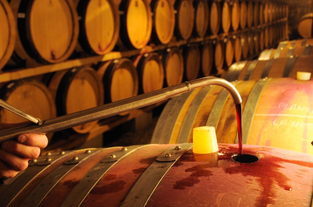 Domaine de Bonserine élevage du vin