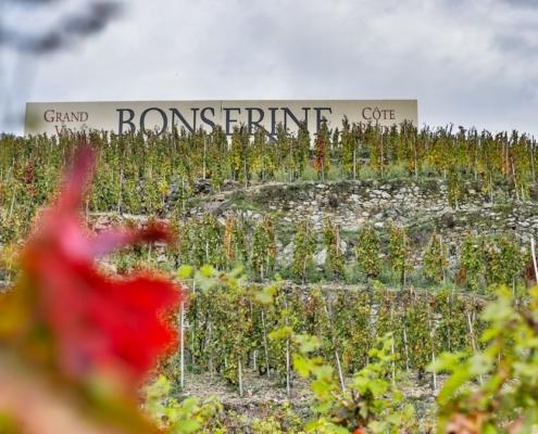 Domaine de Bonserine Côte Brune
