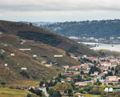 Domaine de Bonserine Le vignoble de Côte-Rôtie et le Village d'Ampuis