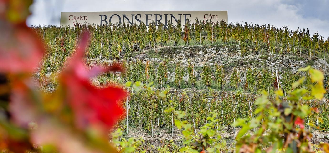 Domaine de Bonserine SLIDE 02